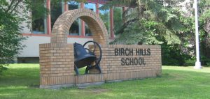 birchhills